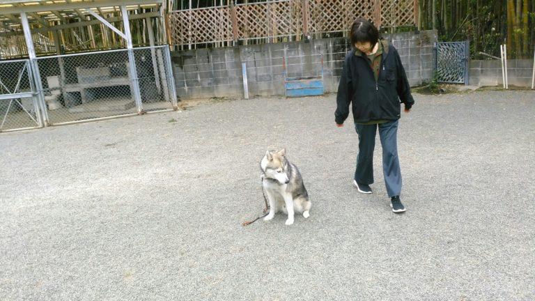 ソラ君・・・・・lesson 3