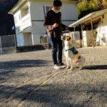 Sunny    lesson   2020/12/5